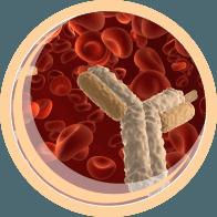 Immunohealth (иммунохелс)